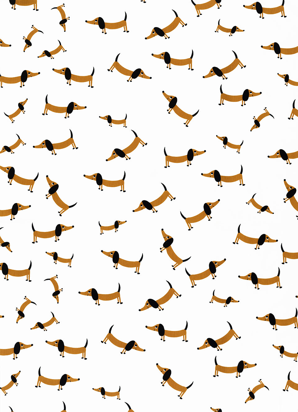 Sausage Dog Flat Sheet by Castle