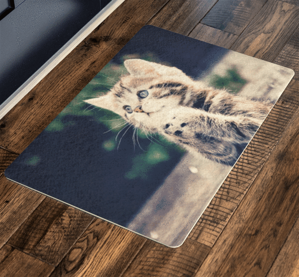 Cute Sweet Cat, Pets Special Doormat For homes Exclusive ( Best price Deal) - LA Shirt Company