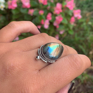 Rainbow Labradorite Ring - Size 12 - Sterling Silver - Gem & Tonik