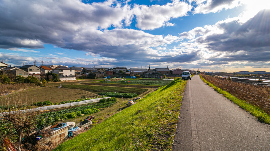 How to Cycle from Kyoto to Osaka - Guide and Route
