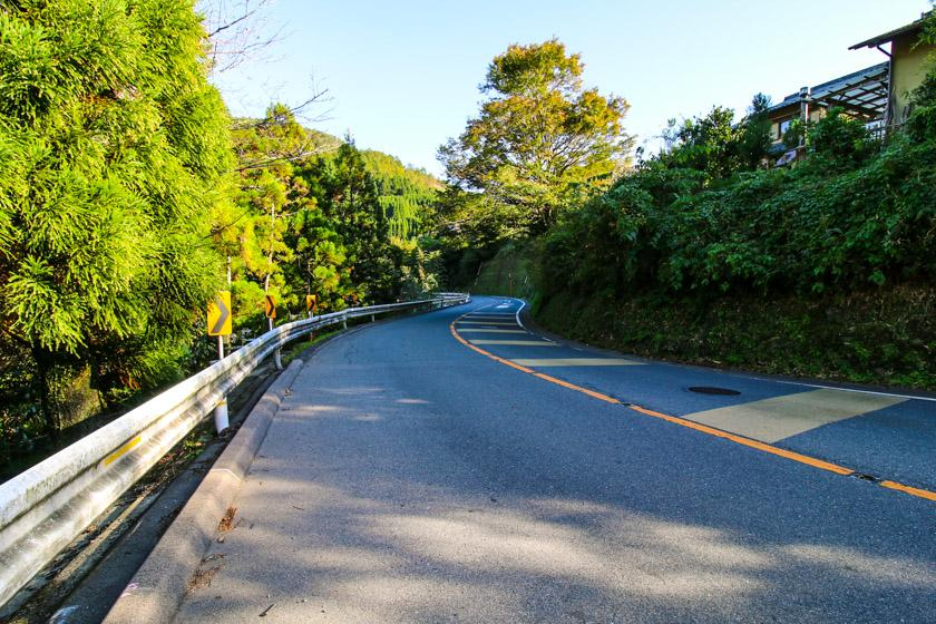 Perfect winding cycling roads along the 162 on our Kyoto cycling route.
