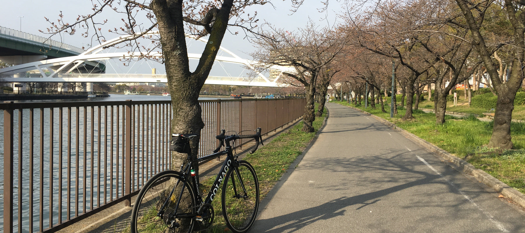 A road bike on the Oogawa river cycling path, in Osaka.