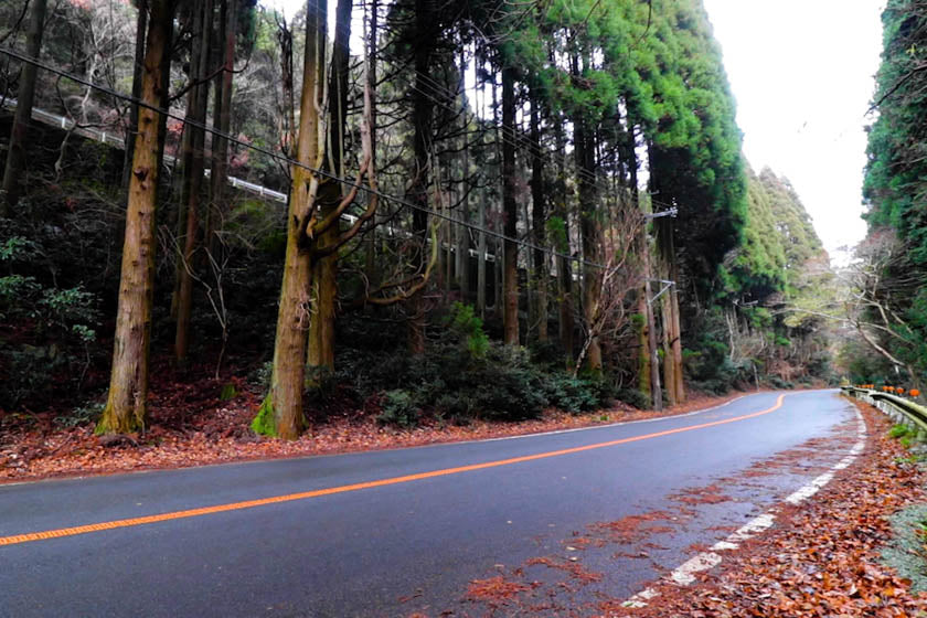 The perfect roads for cycling in Minoh, near Katsuoji temple.