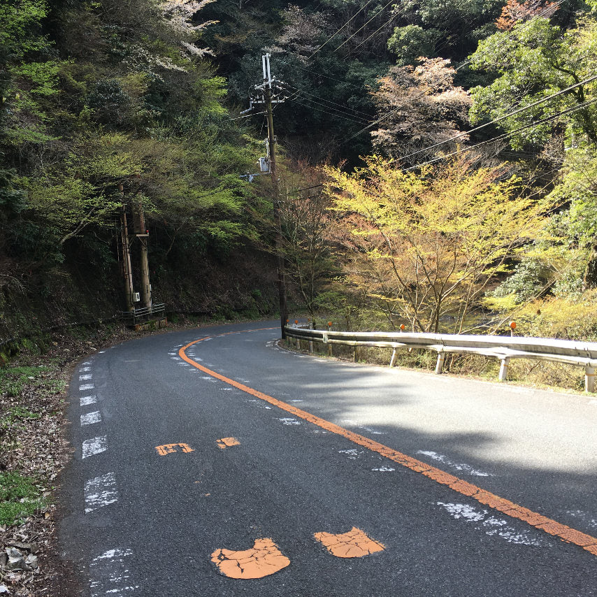Perfect winding mountain roads for cycling.