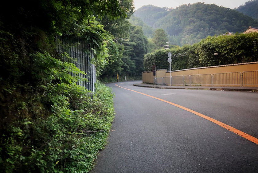 Heading up the 367 cycling route in Kyoto.