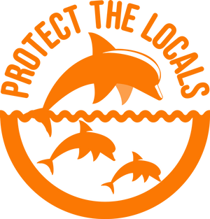 Protect the Locals Dolphins Vinyl