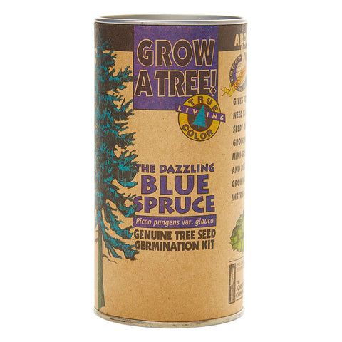 The Jonsteen Company Colorado Blue Spruce | Seed Grow Kit