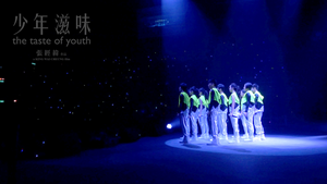 少年滋味 DVD  The Taste of Youth