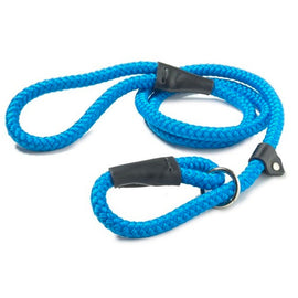 Nylon Rope Slip Lead - Blue