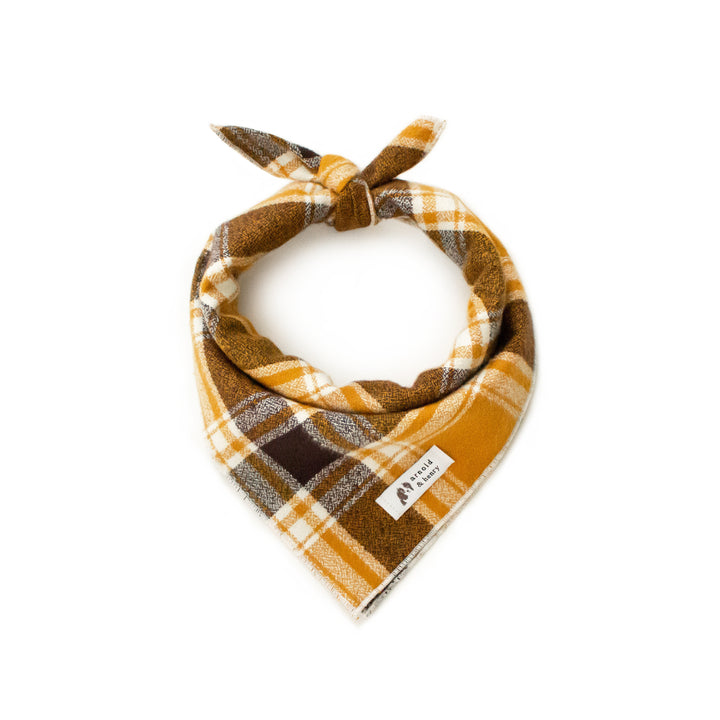 Apple Cider Dog Bandana by Arnold & Henry