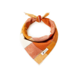 Back in stock! Pumpkin Pie Dog Bandana by Arnold & Henry