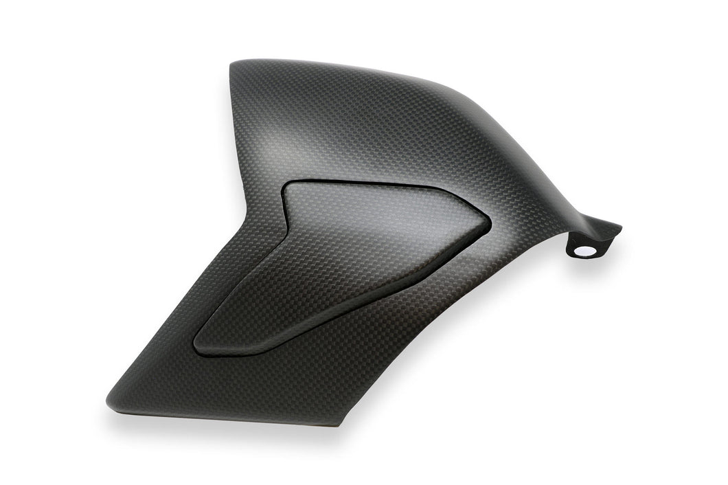ZA864 - CNC RACING Ducati Panigale V4 Carbon Swingarm Cover