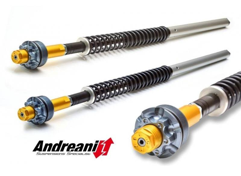 CFD105/D29 - ANDREANI Ducati Multistrada 950 Adjustable Cartridge kit