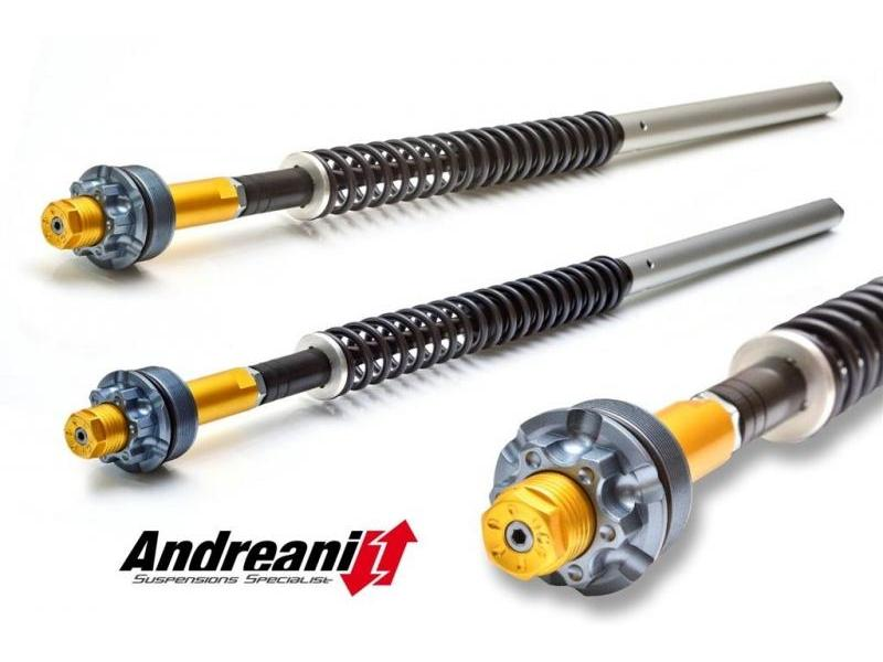 CFD105/D08 - ANDREANI Ducati Hyperstrada 821 Adjustable Cartridge kit