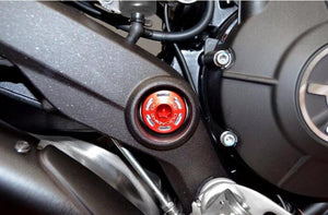 TTF04 - DUCABIKE Ducati Central Frame Plugs (Swingarm)