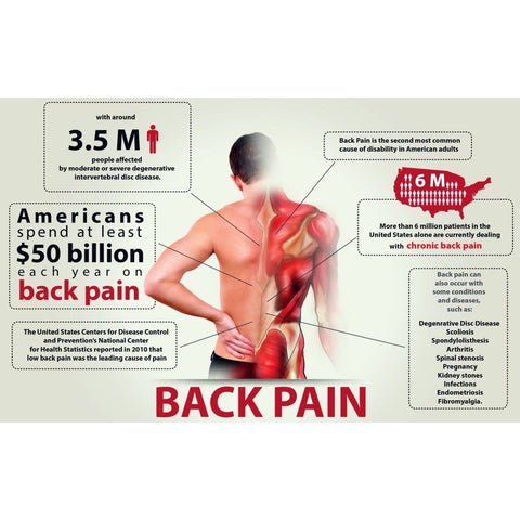 back pain in the US