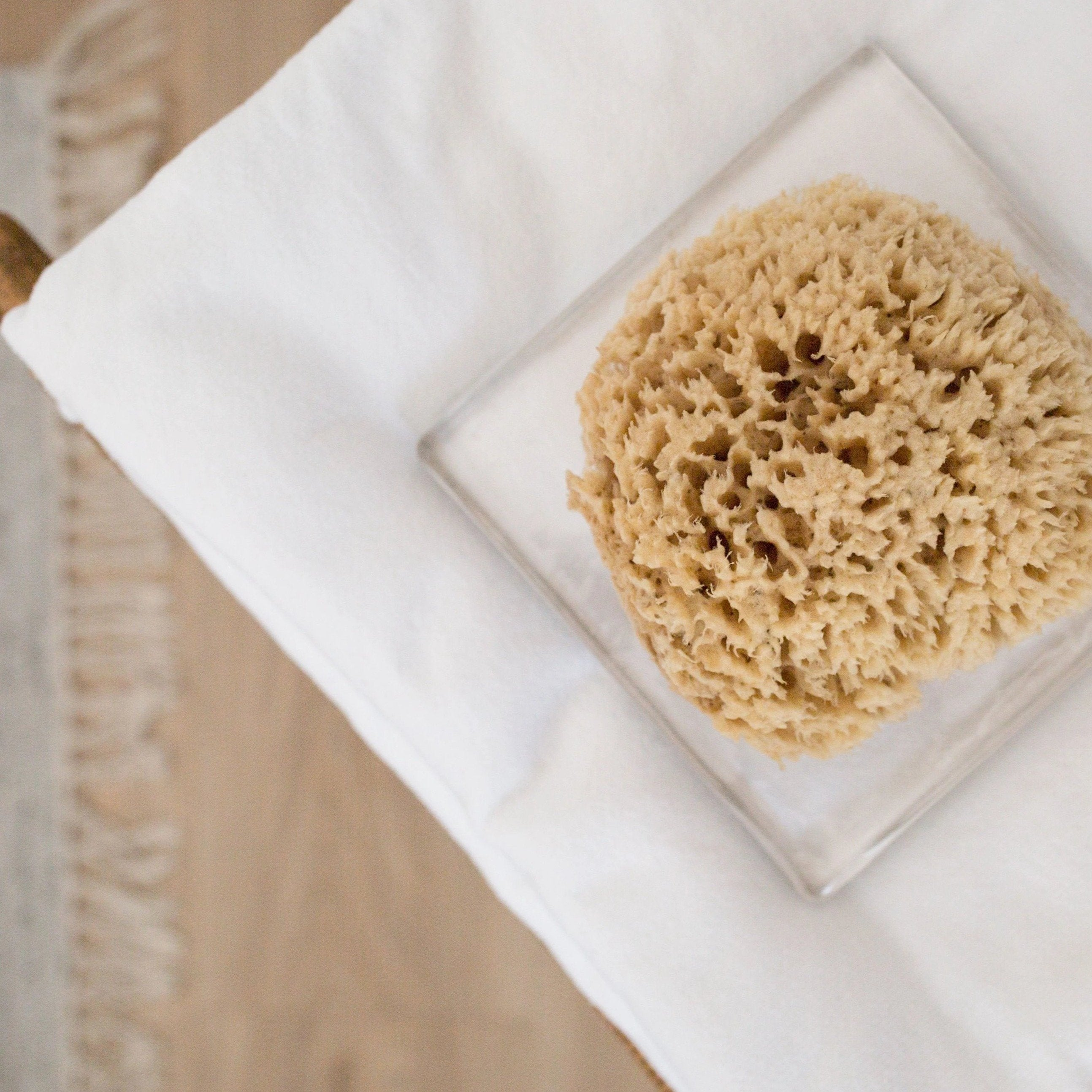 Natural Sea Sponge  |  Sustainably Harvested