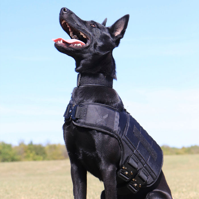 XDOG Blackout Weight Vest V2.5