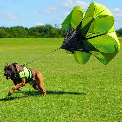 XDOG Parachute Attachment