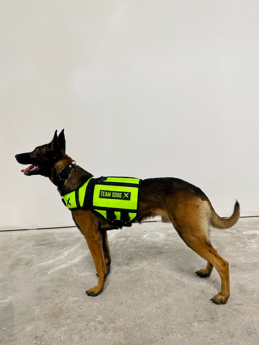 V3 XDOG Weight Vest for Dogs [Lime Green] (PRESALE)