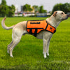 XDOG Weight & Fitness Vest for Dogs (Yellow & Orange)