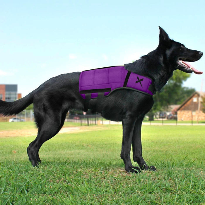 XDOG Weight Vest for Dogs (Version 1) [Purple]