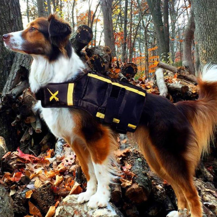 XDOG Weight Vest for Dogs (Version 1)