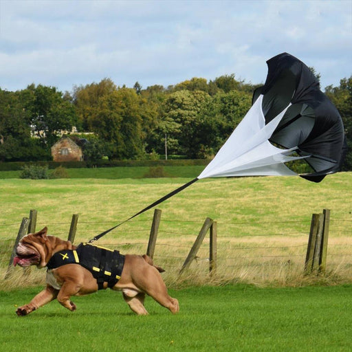 A dog parachute attachment used with XDOG vest harness. Helps add additional resistance when training or exercising. Made for all breeds.