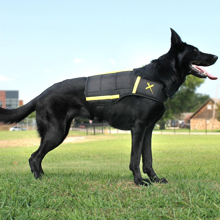 Weight vest for dogs - Weighted canine harness for all breeds.
