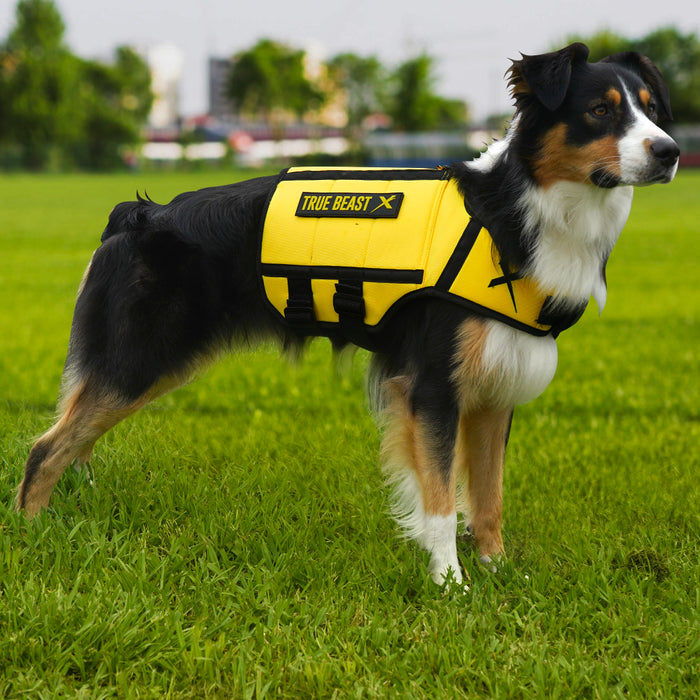 XDOG Weight Vest for Dogs (Version 2- Yellow)