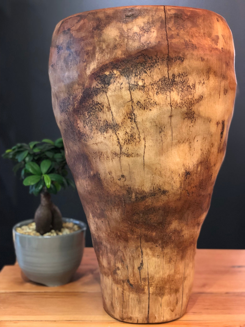 Exhibit Art / Root Standing Pot / Large