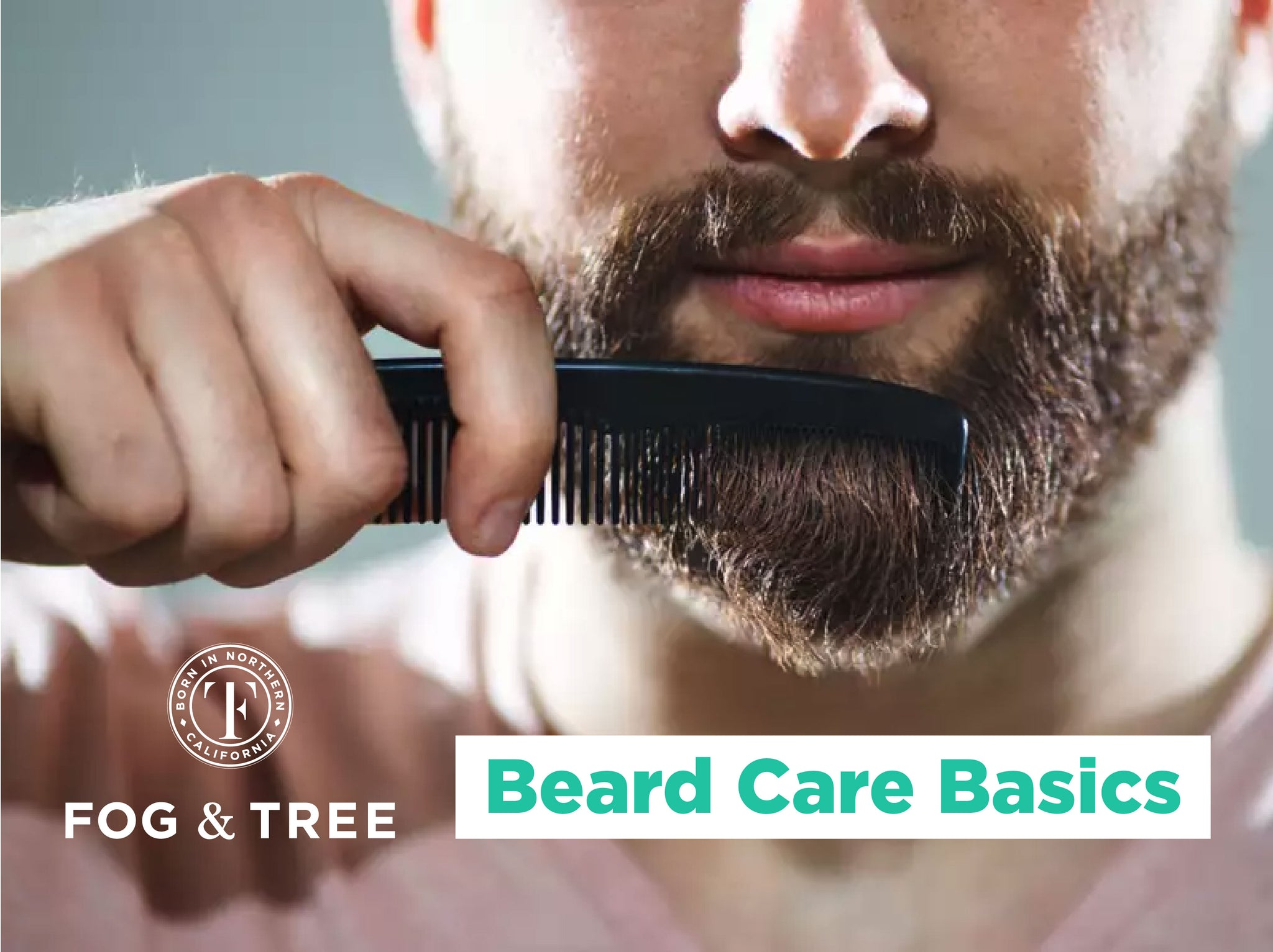 Beard Care Basics