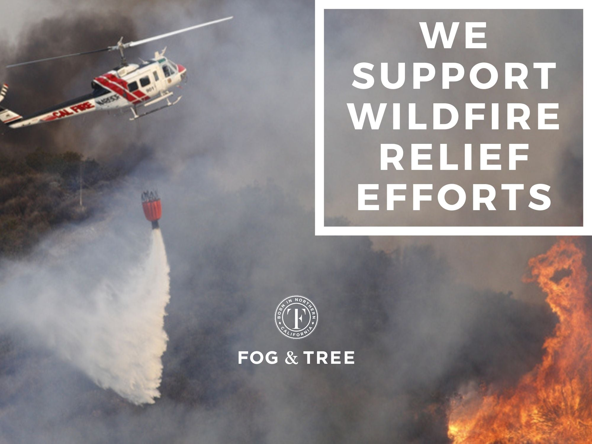 How to Support Wildfire Relief Efforts