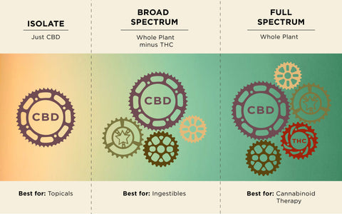 Difference between CBD isolate and broad spectrum