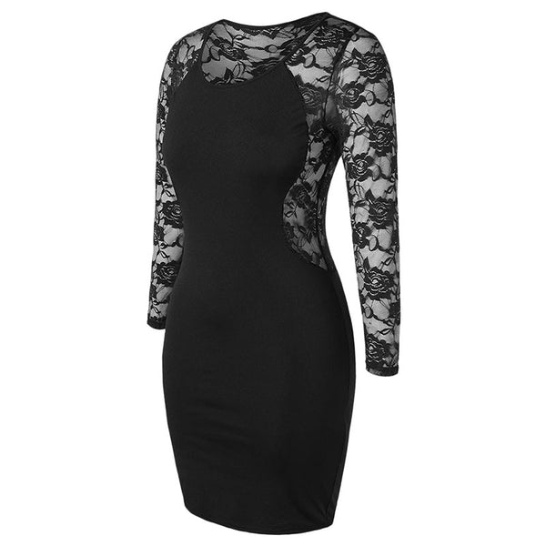 Plus Size Back Mesh Sexy Floral Elegant Lace Dress