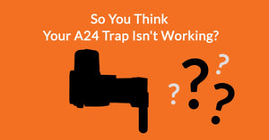 Is My Goodnature A24 Working? Troubleshooting Your Trap