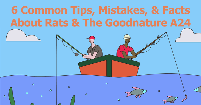 6 Common Tips, Mistakes, & Facts About Rats & The Goodnature A24