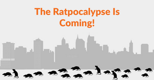 The Ratpocalypse is Here - Why Rat Populations Are Booming During The COVID-19 Pandemic