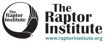 The Raptor Institute