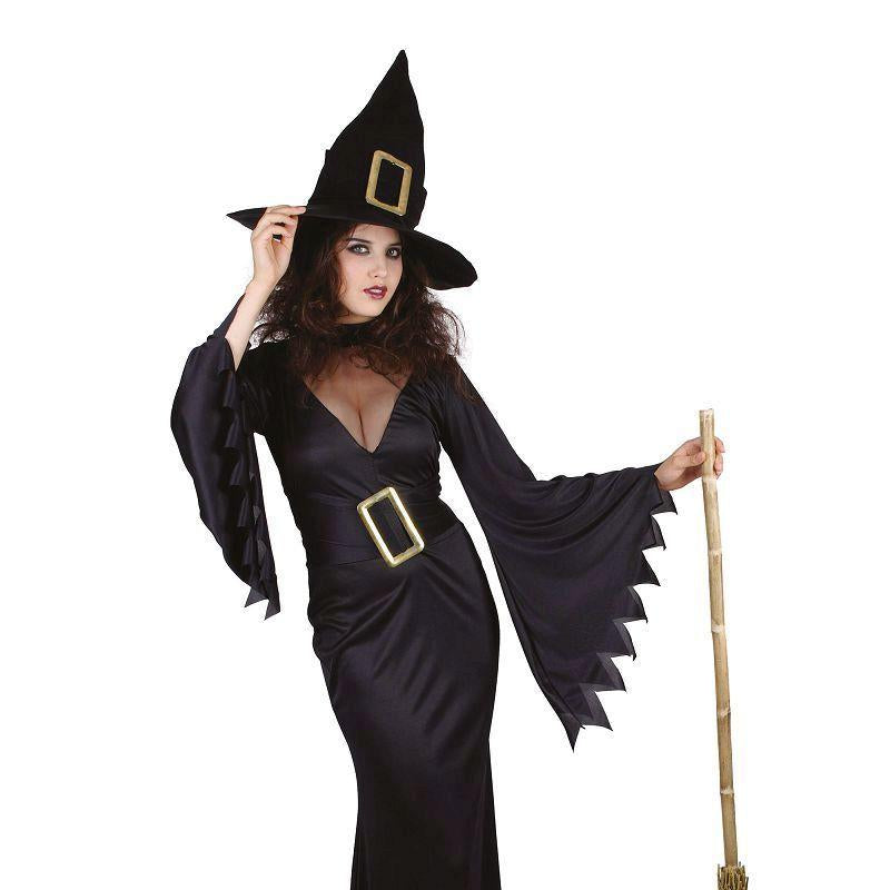Womens Witch Costume. Black Adult Costume - Female - One Size Halloween Costume