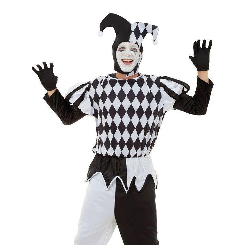 Mens Harlequin Male Adult Costume - Male - One Size Halloween Costume