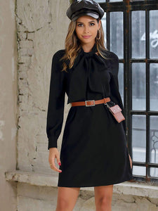 Tie Neck Raglan Sleeve Solid Dress Without Belted