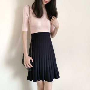 2021 New Spring Collections Pink Colorblock Navy Blue Pleated Knitted Skater Elegant Dress England Style