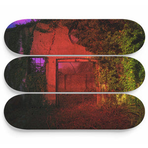 Predatory Growth Skateboard Wall Art