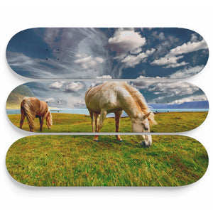 Horse and Solitude Skateboard Wall Art