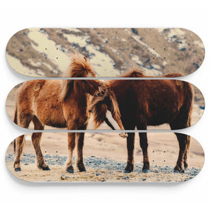 Horses of Joy Skateboard Wall Art