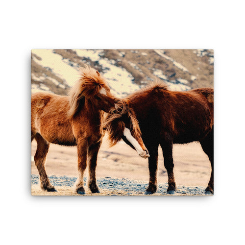 Horses of Joy Canvas Print
