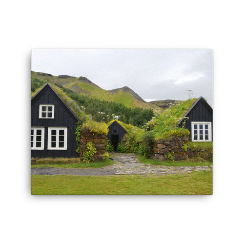 Wide Open Moss Canvas Print