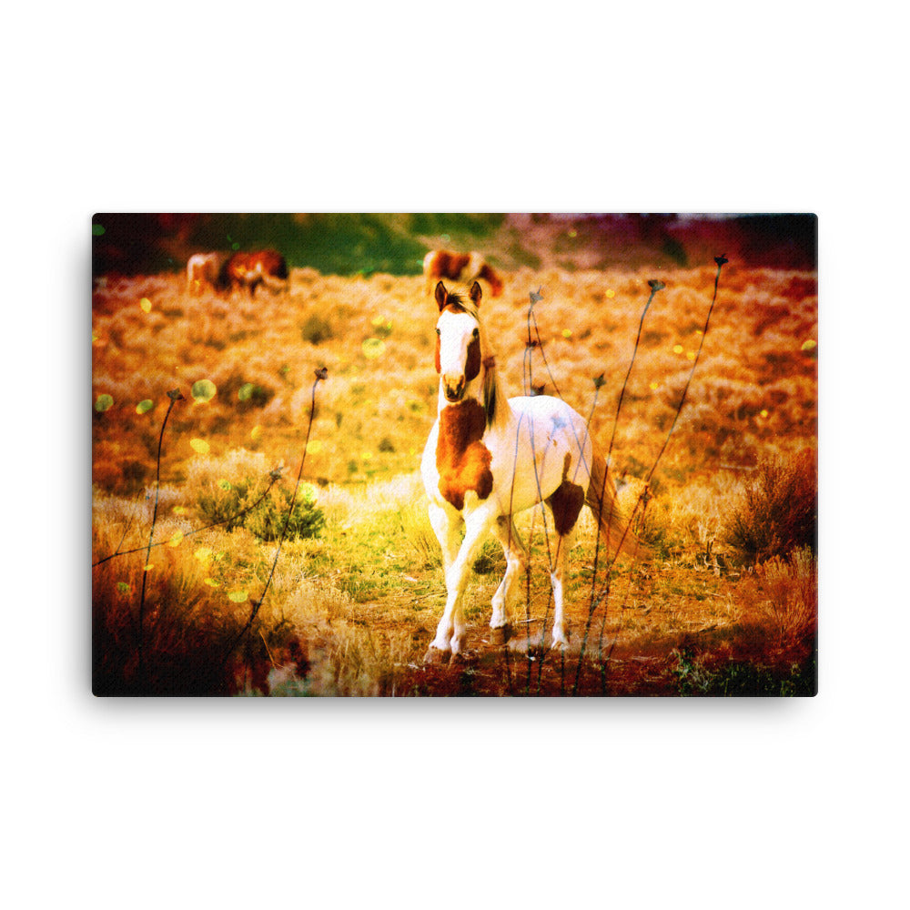 Fasting With Her Horse Art Canvas
