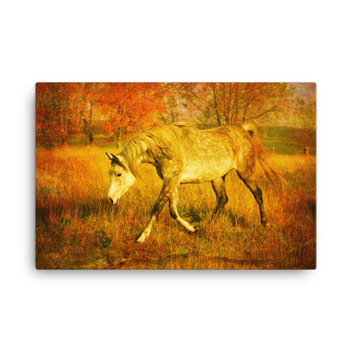 Plan To Spend Horse Art Canvas